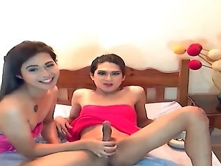 Duo Shemale Jerking Penis On Webcam These Shemale Duo Is Utterly Hot
