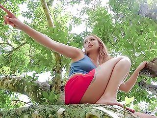 Dame On Treetop